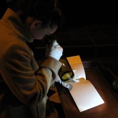 Dispositif de lecture, exposé dans le cadre d'Un vignoble, Une émotion, au château Pape Clément à Pessac, 2011