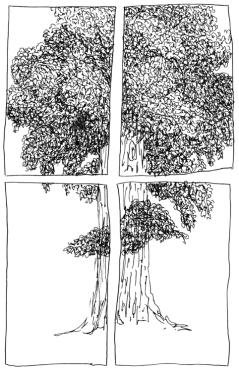 Face à l'arbre, stylo plume sur papier, 21 x 14,8 cm, 2012