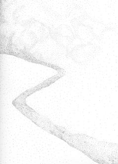 bplp 06, pointe tubulaire sur papier, carnet 21 x 15 cm.