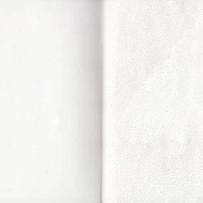 bplp carnet 01, papier perforé à l'aiguille, 21 x 15 cm.