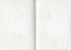 bplp carnet 02, papier perforé à l'aiguille et cousu, 21 x 15 cm.